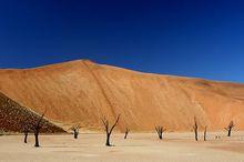 世界上最高的沙丘,大约高达350米