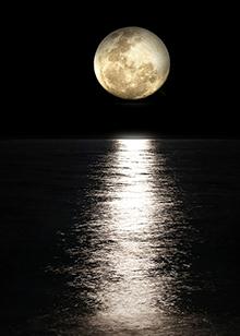 神奇的月亮